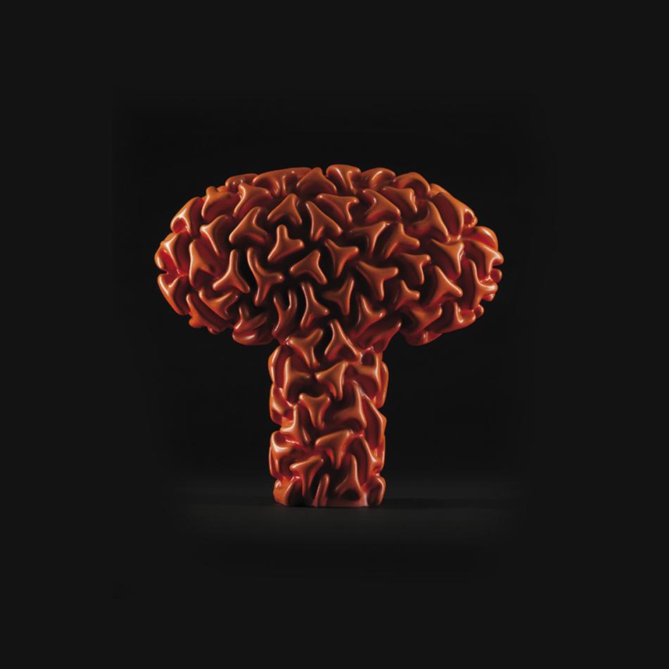 Image: Fruiting Body